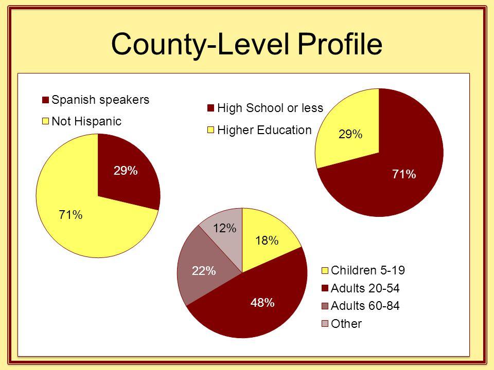 County-Level Profile