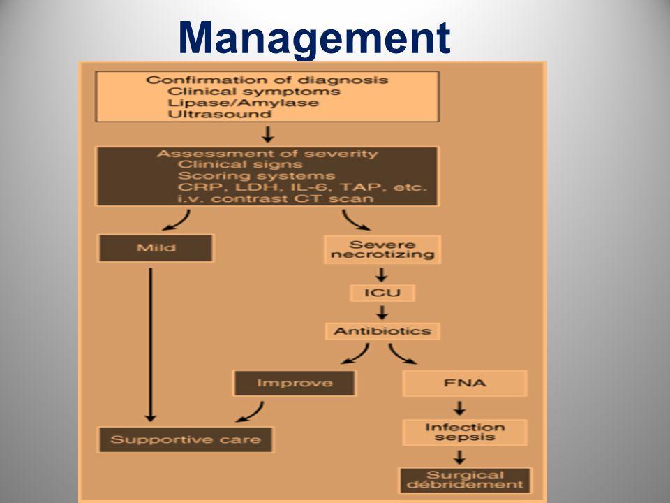Management 17