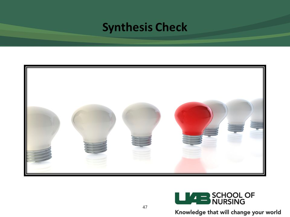 Synthesis Check 47