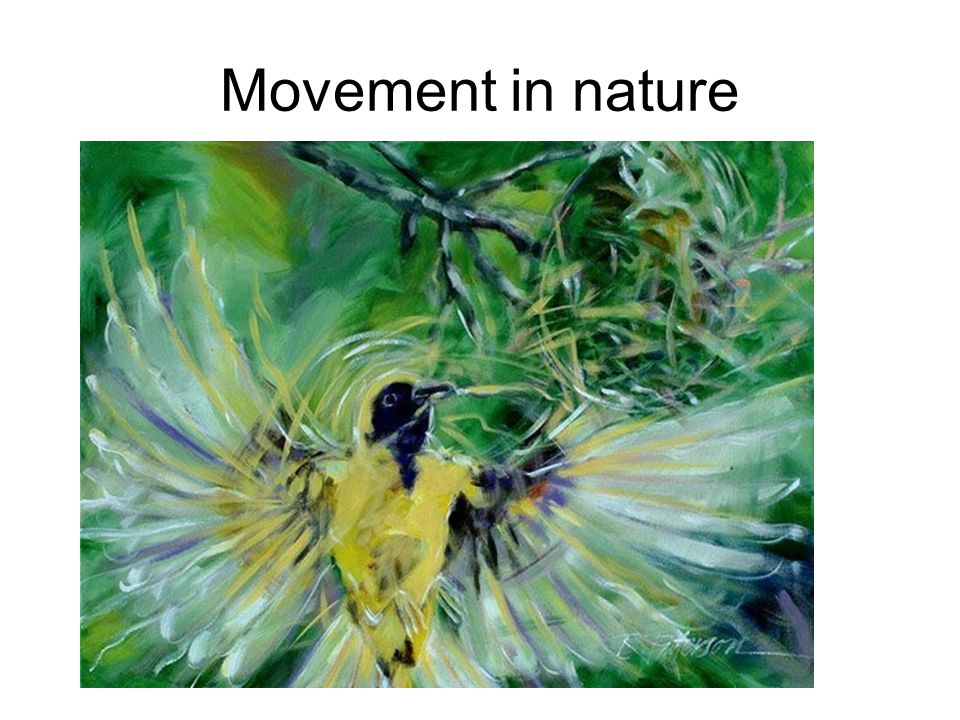 Movement in nature
