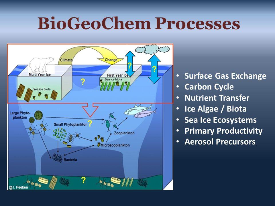 BioGeoChem Processes Surface Gas Exchange Carbon Cycle Nutrient Transfer Ice Algae / Biota Sea Ice Ecosystems Primary Productivity Aerosol Precursors