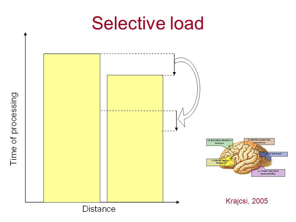 Selective load Krajcsi, 2005