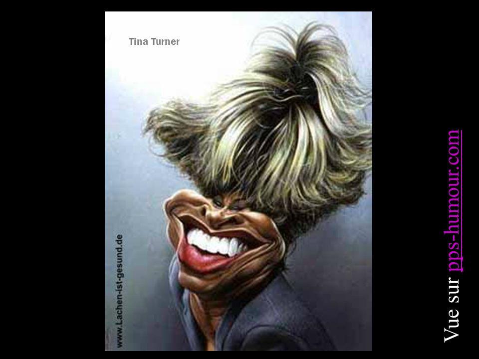 Tina Turner Vue sur pps-humour.compps-humour.com