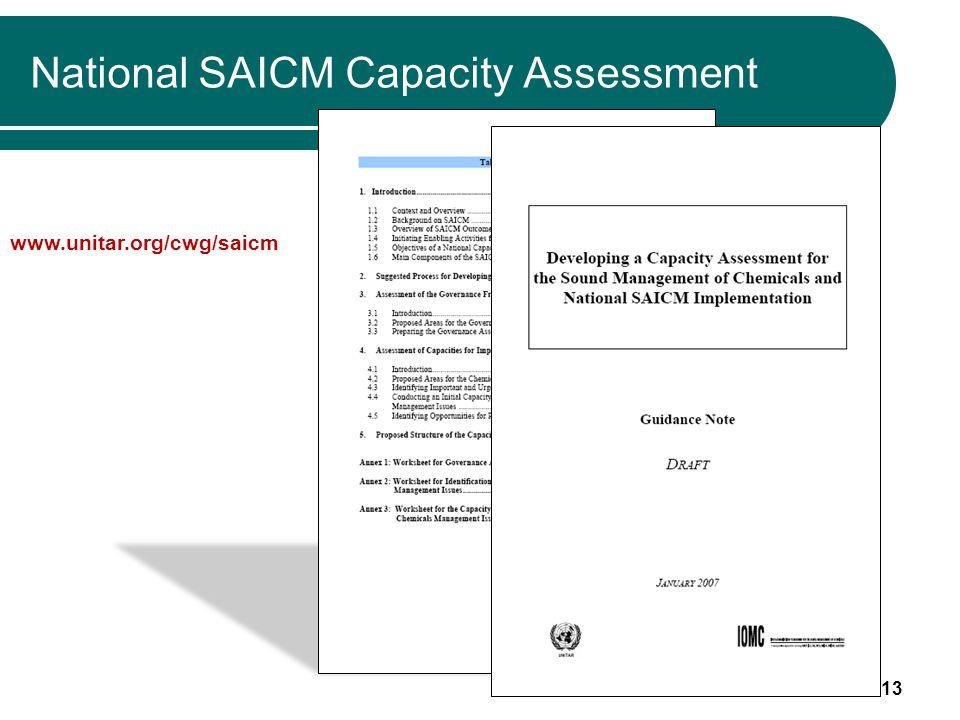 13 National SAICM Capacity Assessment www.unitar.org/cwg/saicm