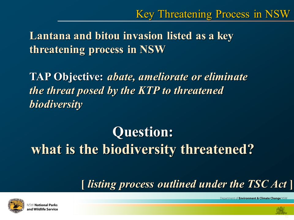 12 Lantana and bitou invasion listed as a key threatening process in NSW TAP Objective: abate, ameliorate or eliminate the threat posed by the KTP to threatened biodiversity Question: what is the biodiversity threatened.