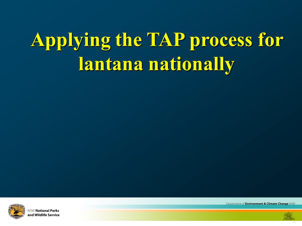 16 Applying the TAP process for lantana nationally