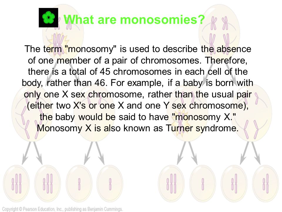 What are monosomies? The term