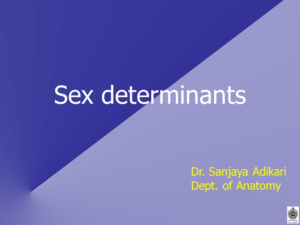 Sex determinants Dr. Sanjaya Adikari Dept. of Anatomy
