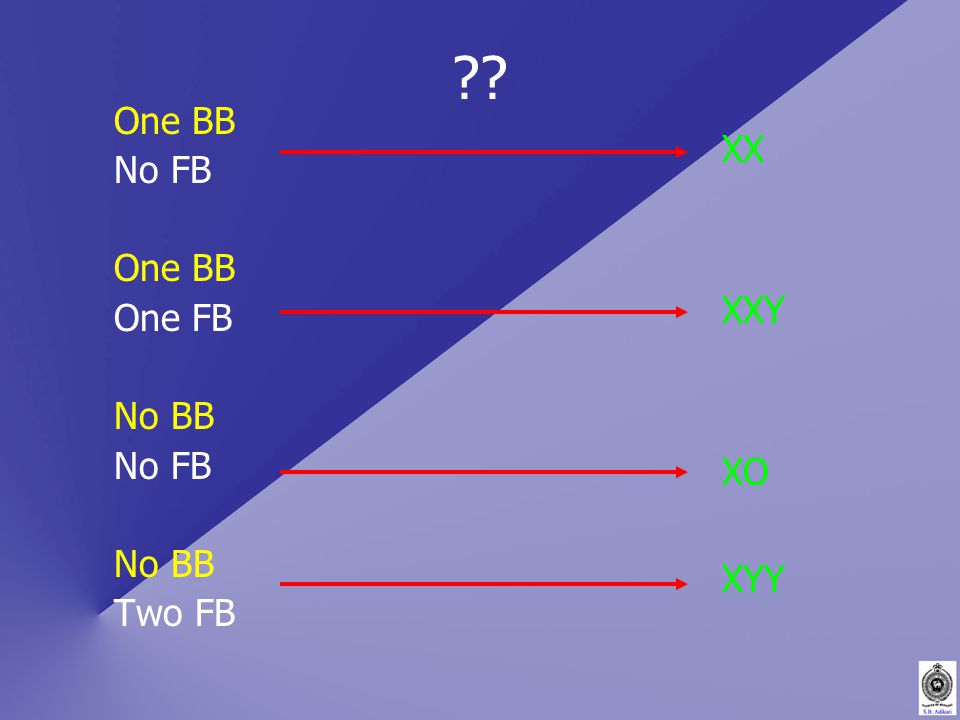 One BB No FB One BB One FB No BB No FB No BB Two FB XX XXY XO XYY