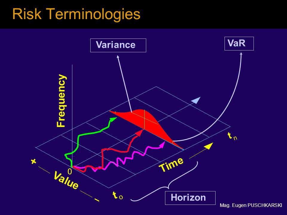 Mag. Eugen PUSCHKARSKI Risk Terminologies Value t n Time t o + 0 Frequency VaR Variance Horizon