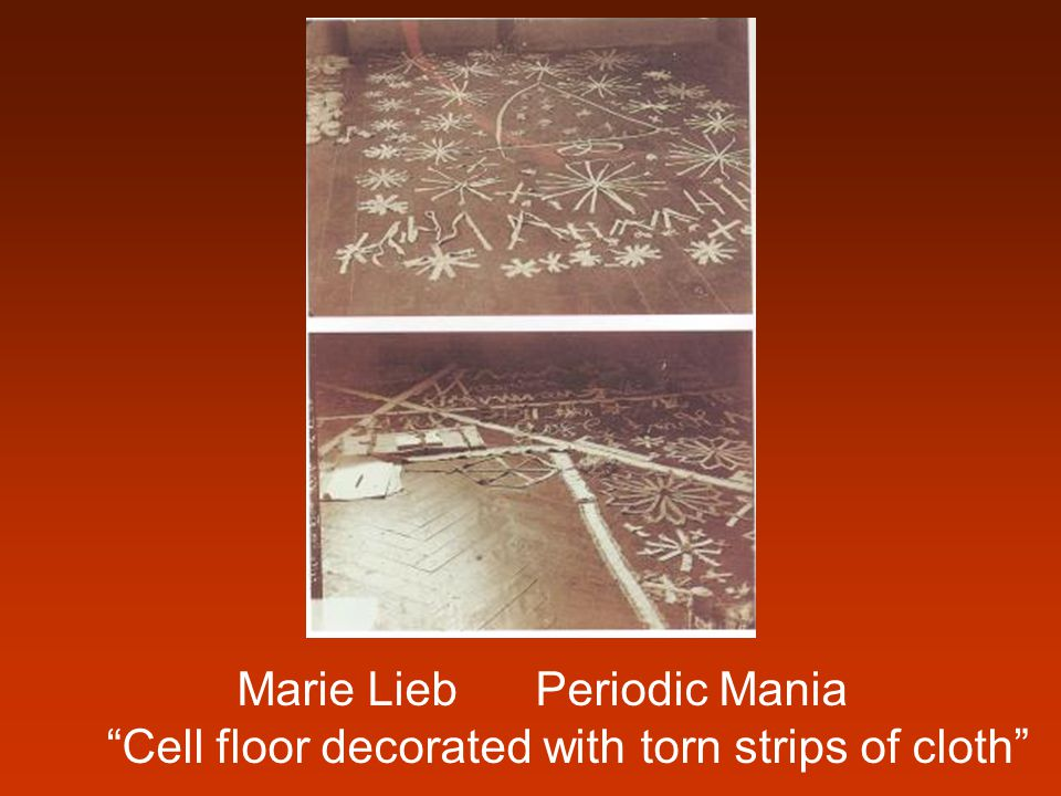 """Marie Lieb Periodic Mania """"Cell floor decorated with torn strips of cloth"""""""