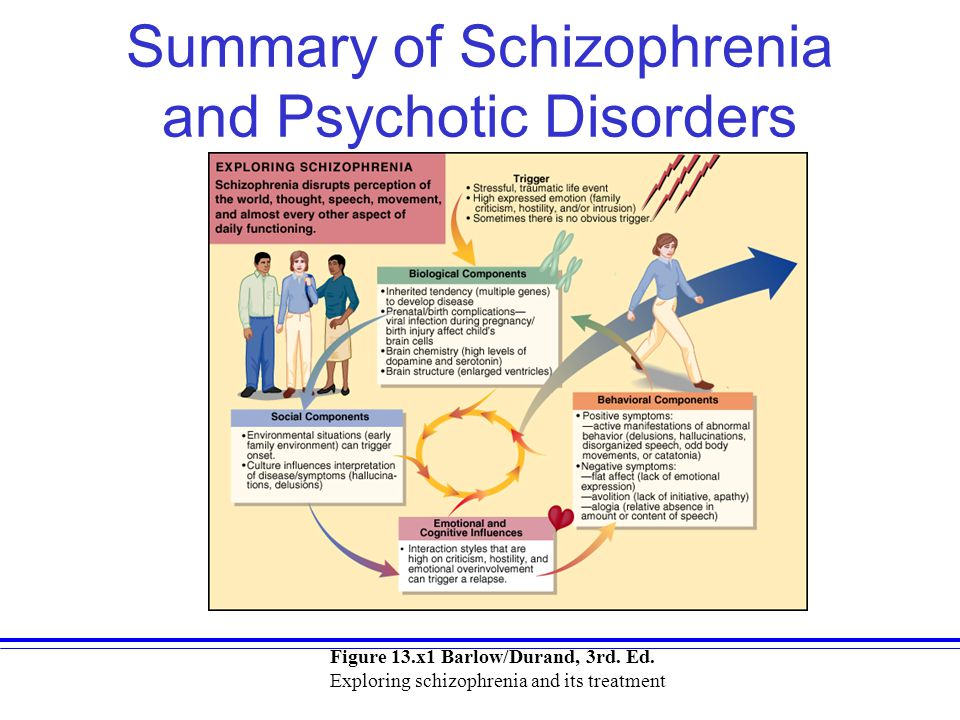 Summary of Schizophrenia and Psychotic Disorders Figure 13.x1 Barlow/Durand, 3rd. Ed. Exploring schizophrenia and its treatment