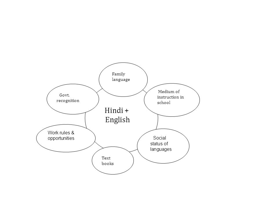 Hindi + English Work rules & opportunities Family language Social status of languages Text books Govt.
