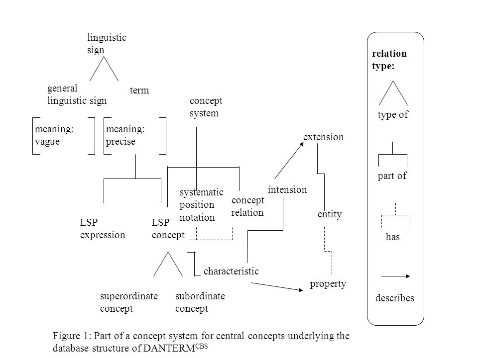 intension meaning: precise meaning: vague linguistic sign general linguistic sign term LSP expression LSP concept characteristic superordinate concept subordinate concept concept system concept relation extension entity property systematic position notation type of part of has describes relation type: Figure 1: Part of a concept system for central concepts underlying the database structure of DANTERM CBS