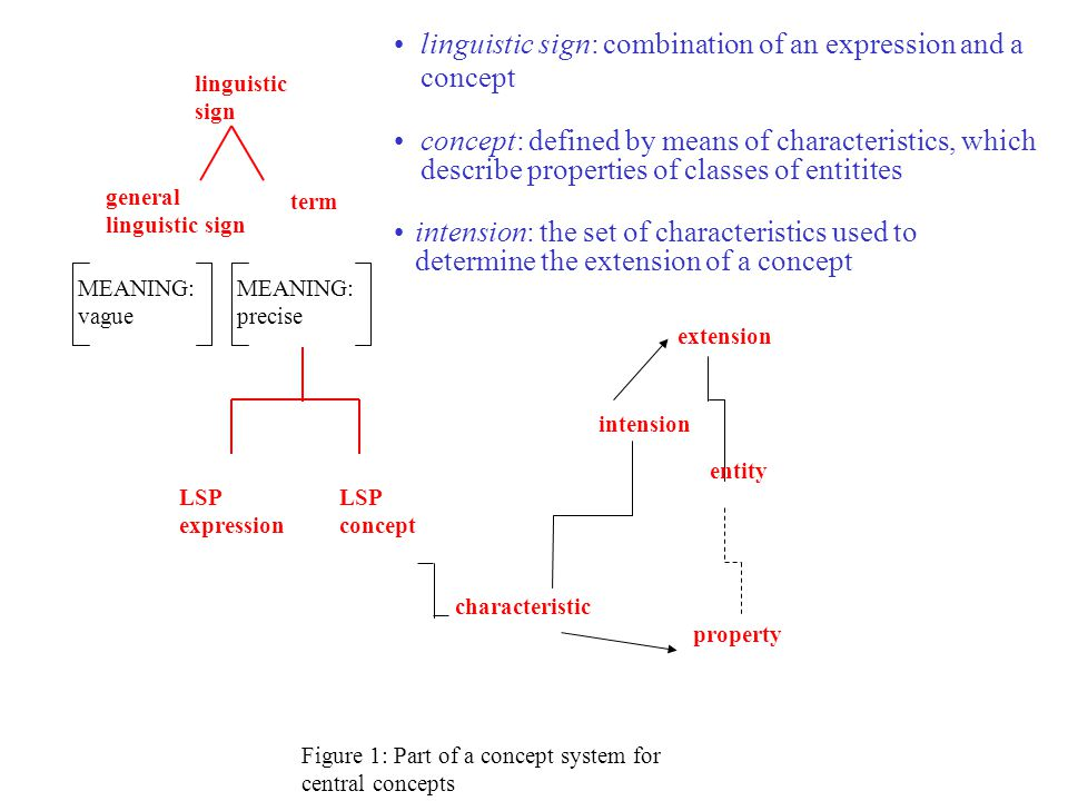 MEANING: precise MEANING: vague linguistic sign general linguistic sign term LSP expression LSP concept Figure 1: Part of a concept system for central concepts linguistic sign: combination of an expression and a concept intension characteristic extension entity property concept: defined by means of characteristics, which describe properties of classes of entitites intension: the set of characteristics used to determine the extension of a concept