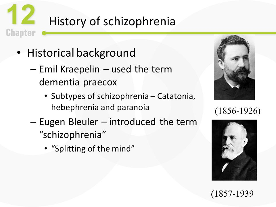 Schizophrenia: The Positive Symptom Cluster The positive symptoms – Excess or distortion of normal behavior Delusions: The basic feature of madness – Gross misrepresentation of reality – Include delusions of grandeur (mistaken belief that one is famous or powerful) – or delusions of persecution (others out to get me)