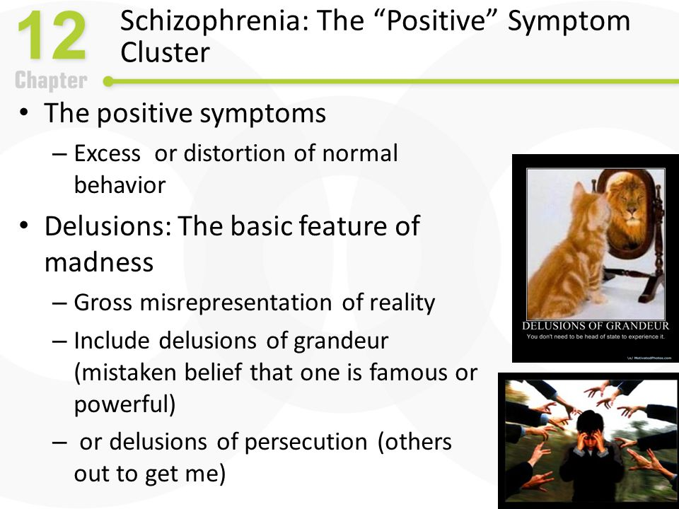 Causes of Schizophrenia: Neurobiological Influences The dopamine hypothesis – Drugs that increase dopamine (agonists) Result in schizophrenic-like behavior such as L-Dopa for Parkinson's disease, amphetamines – Drugs that decrease dopamine (antagonists) Reduce schizophrenic-like behavior – neuroleptics – Dopamine hypothesis is problematic and overly simplistic – Current theories emphasize many neurotransmitters
