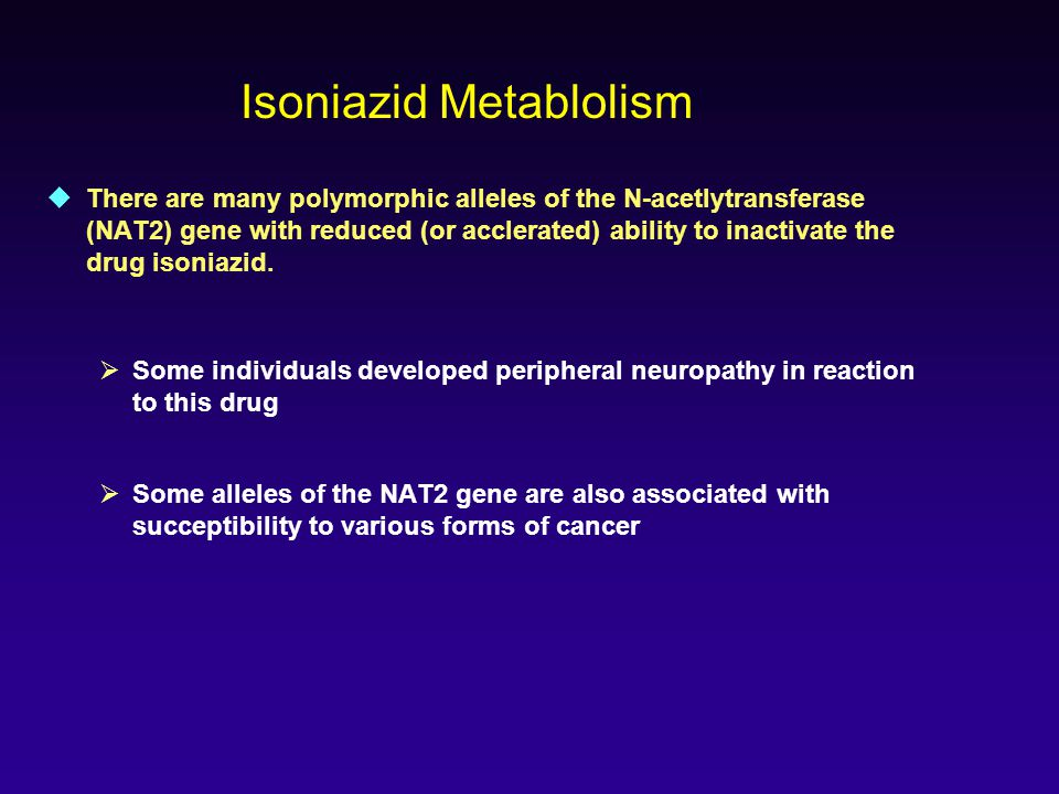  There are many polymorphic alleles of the N-acetlytransferase (NAT2) gene with reduced (or acclerated) ability to inactivate the drug isoniazid.