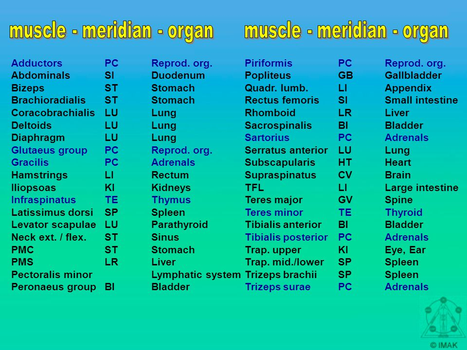 Testing of the element points which will most probable negate the positive findings Case history all the criteria of the TCM Local TL / Challenge of organs, alarm points… AK muscle testing hypertonicy normotonus weakness