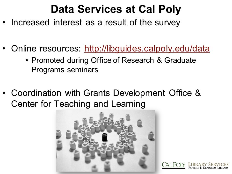 Data Services at Cal Poly Increased interest as a result of the survey Online resources: http://libguides.calpoly.edu/datahttp://libguides.calpoly.edu/data Promoted during Office of Research & Graduate Programs seminars Coordination with Grants Development Office & Center for Teaching and Learning