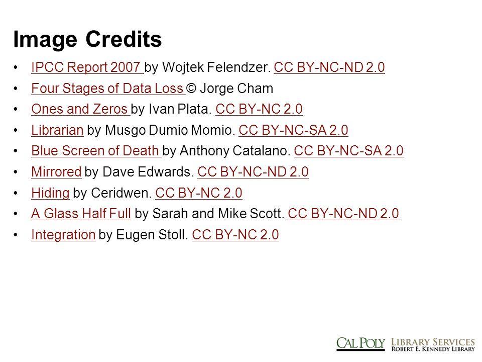 Image Credits IPCC Report 2007 by Wojtek Felendzer.