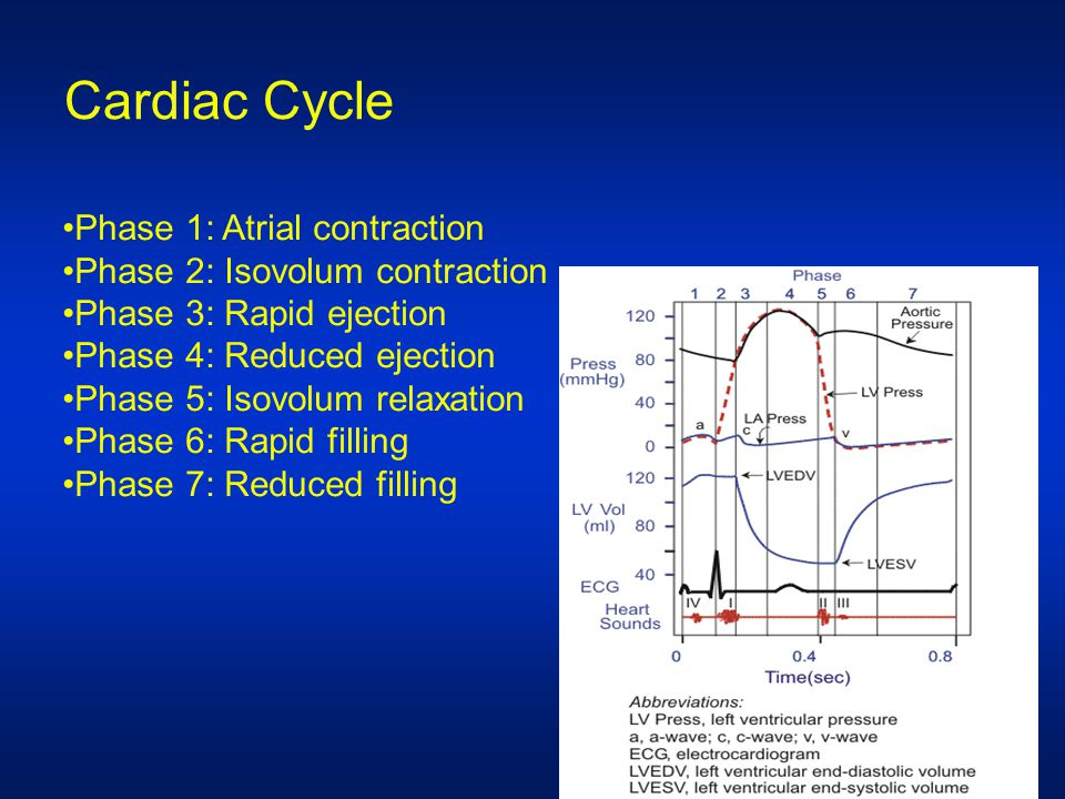 Cardiac output Volume of blood ejected from left ventricle in one minute It is the determinant of global oxygen transport from the heart to the body It reflects the efficiency of cardiovascular system There no absolute value for cardiac output measurement