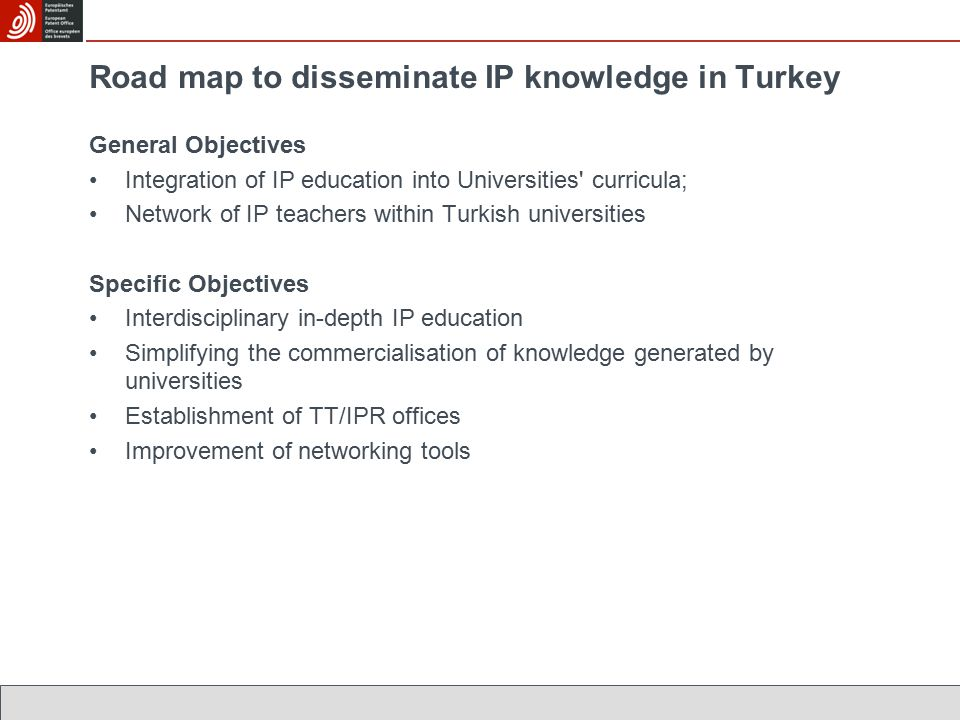 Road map to disseminate IP knowledge in Turkey General Objectives Integration of IP education into Universities curricula; Network of IP teachers within Turkish universities Specific Objectives Interdisciplinary in-depth IP education Simplifying the commercialisation of knowledge generated by universities Establishment of TT/IPR offices Improvement of networking tools
