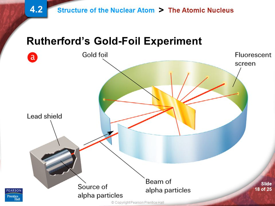 Slide 18 of 25 © Copyright Pearson Prentice Hall > Structure of the Nuclear Atom The Atomic Nucleus Rutherford's Gold-Foil Experiment 4.2