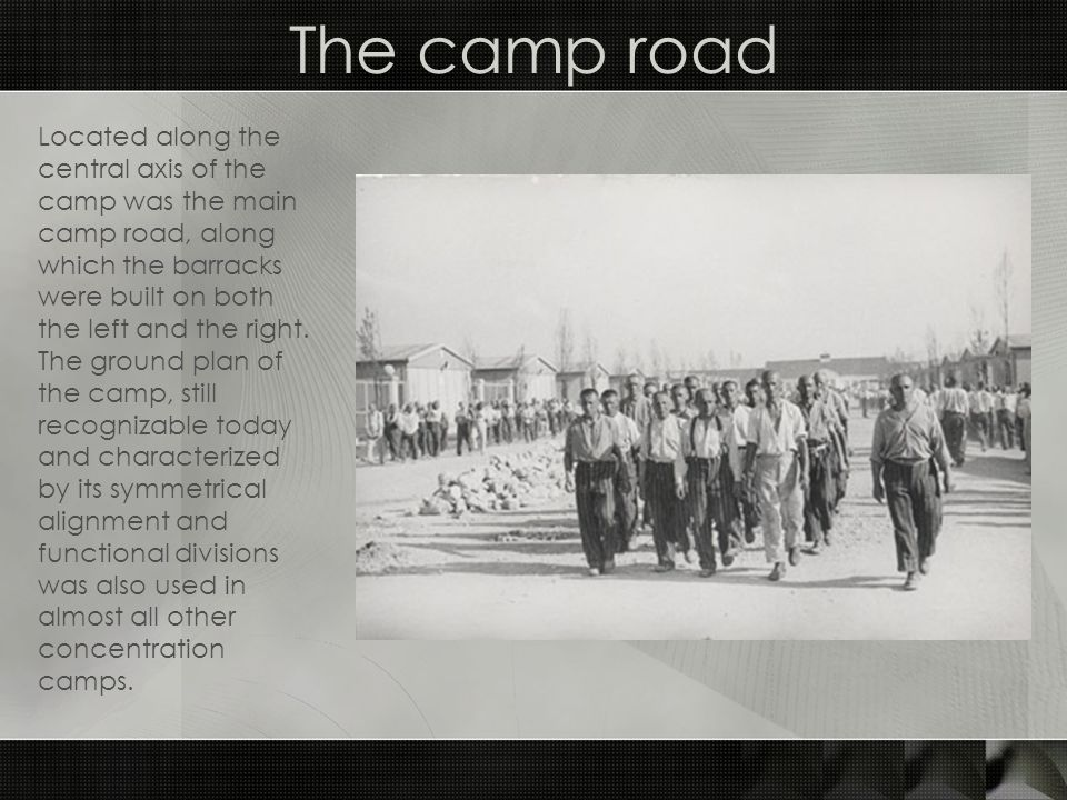 The camp road Located along the central axis of the camp was the main camp road, along which the barracks were built on both the left and the right.