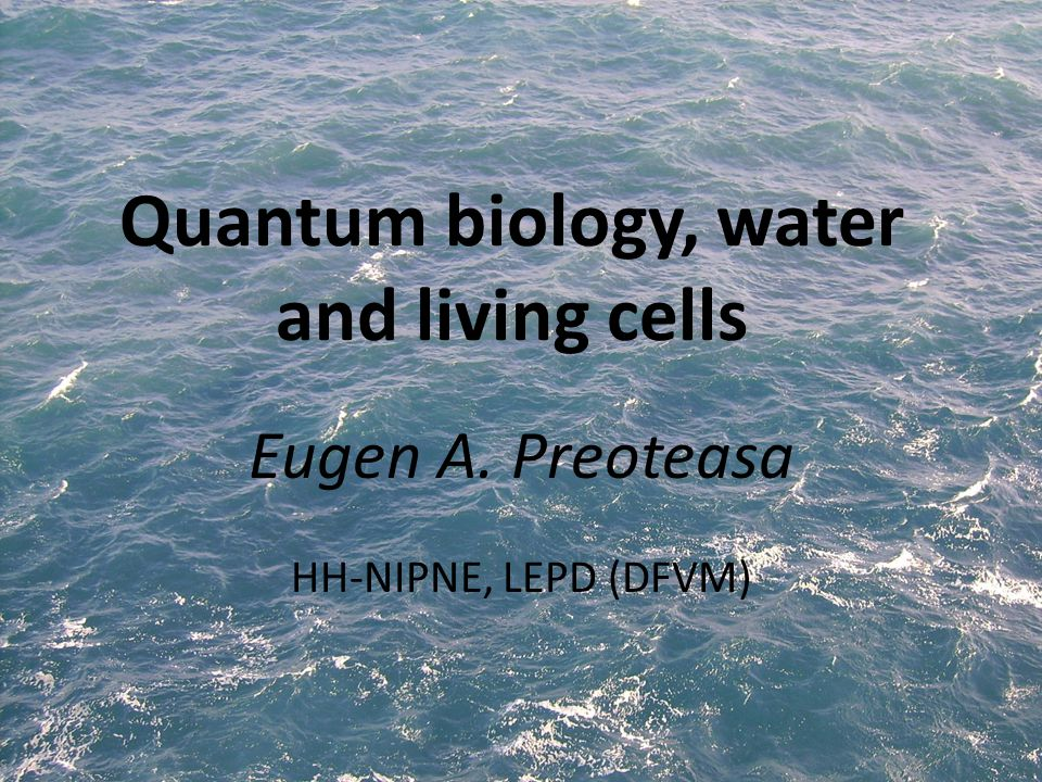 Quantum biology, water and living cells Eugen A. Preoteasa HH-NIPNE, LEPD (DFVM)