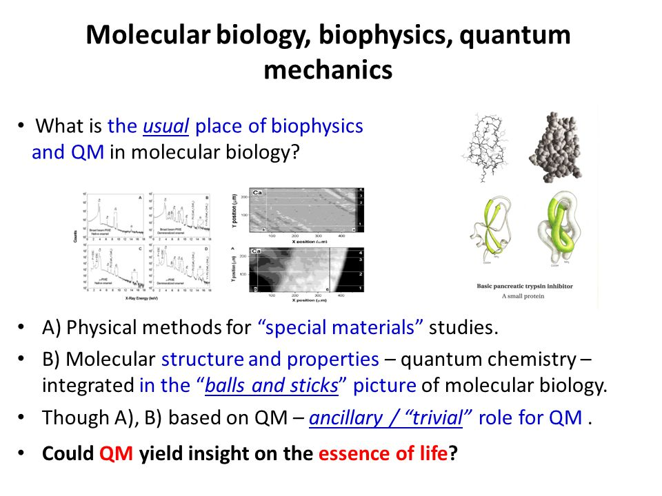 Molecular biology, biophysics, quantum mechanics A) Physical methods for special materials studies.