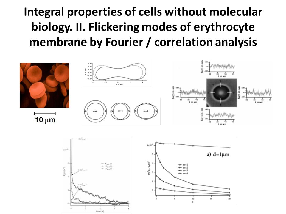 Integral properties of cells without molecular biology.
