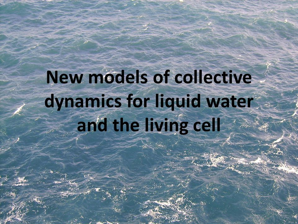 New models of collective dynamics for liquid water and the living cell
