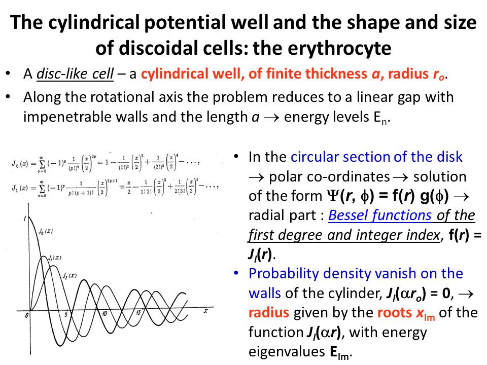The cylindrical potential well and the shape and size of discoidal cells: the erythrocyte A disc-like cell – a cylindrical well, of finite thickness a, radius r o.