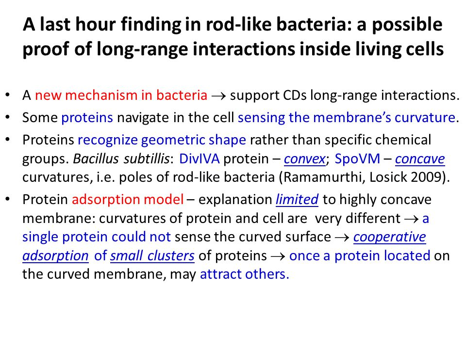 A last hour finding in rod-like bacteria: a possible proof of long-range interactions inside living cells A new mechanism in bacteria  support CDs long-range interactions.