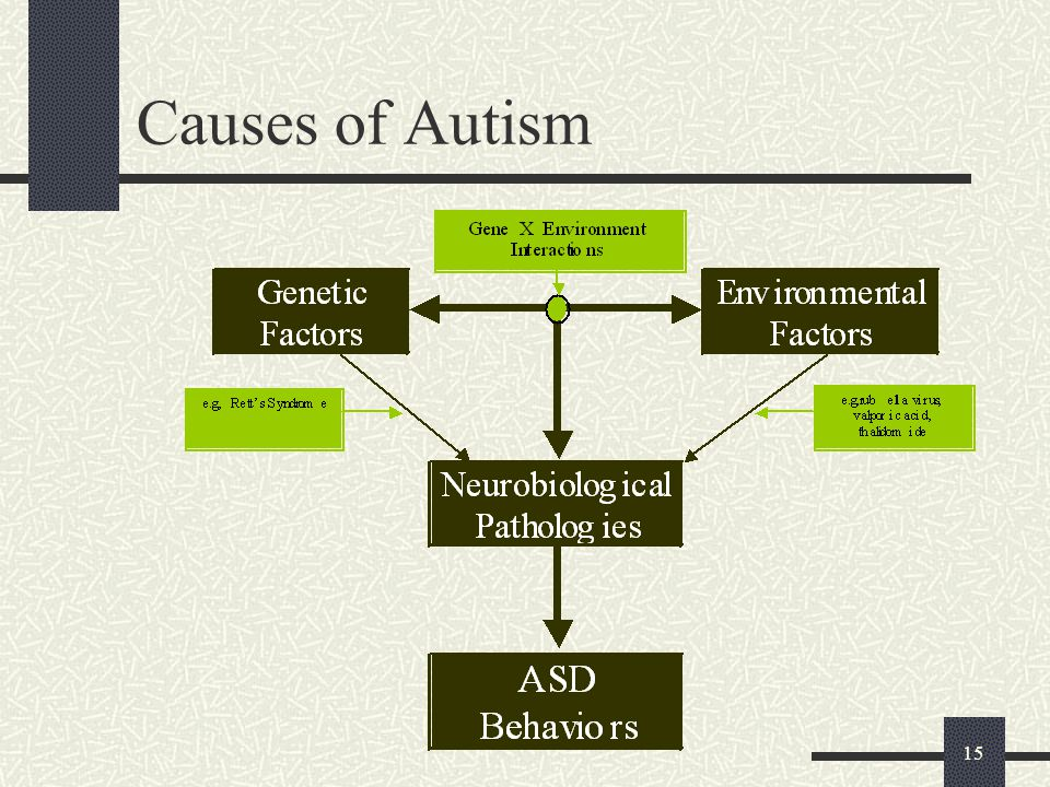 15 Causes of Autism