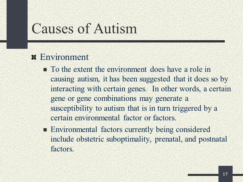 17 Causes of Autism Environment To the extent the environment does have a role in causing autism, it has been suggested that it does so by interacting