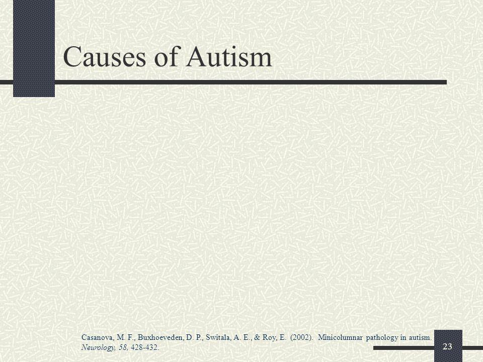 23 Causes of Autism Casanova, M.F., Buxhoeveden, D.
