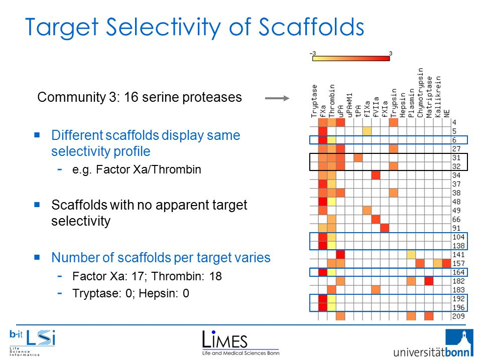Target Selectivity of Scaffolds  Different scaffolds display same selectivity profile - e.g.