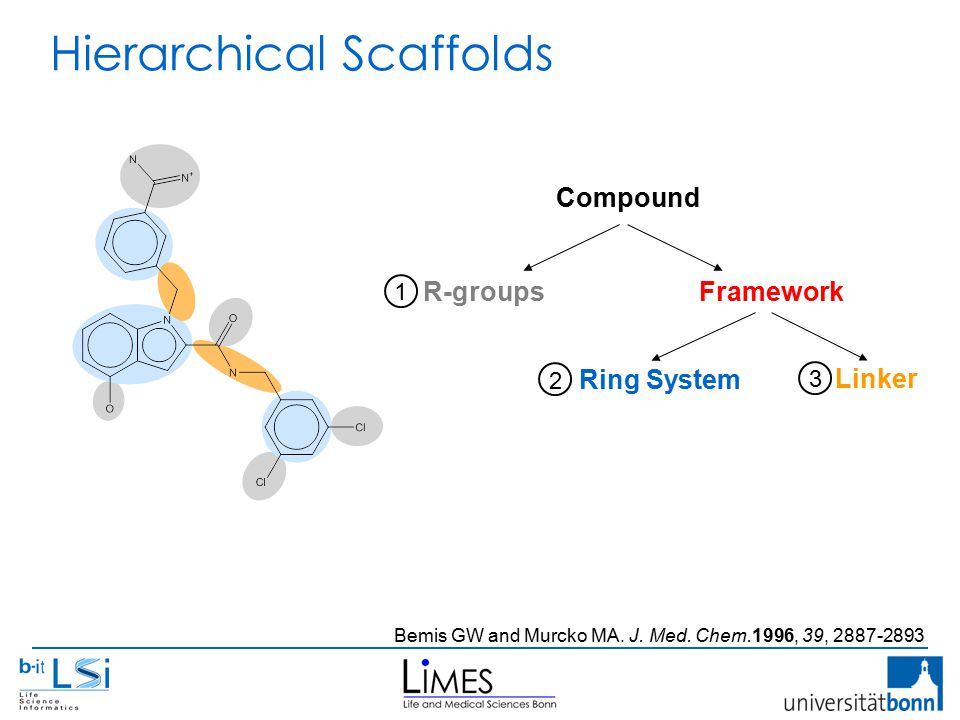 Hierarchical Scaffolds Bemis GW and Murcko MA. J.