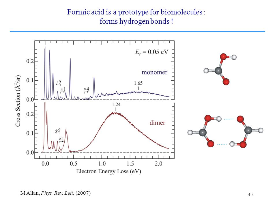 47 Formic acid is a prototype for biomolecules : forms hydrogen bonds .