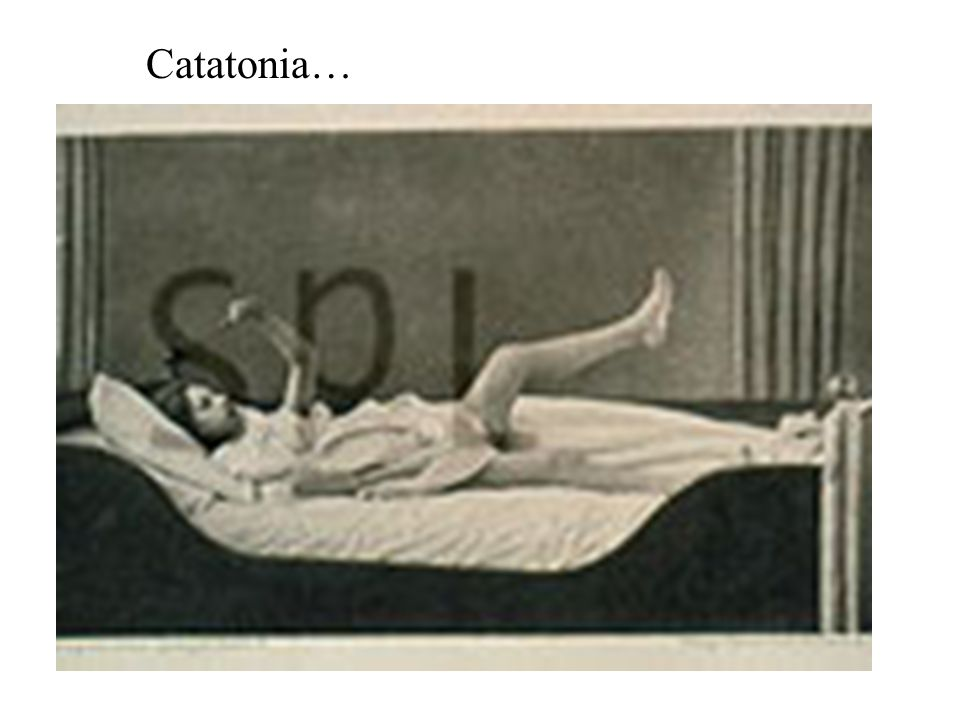 Catatonia…