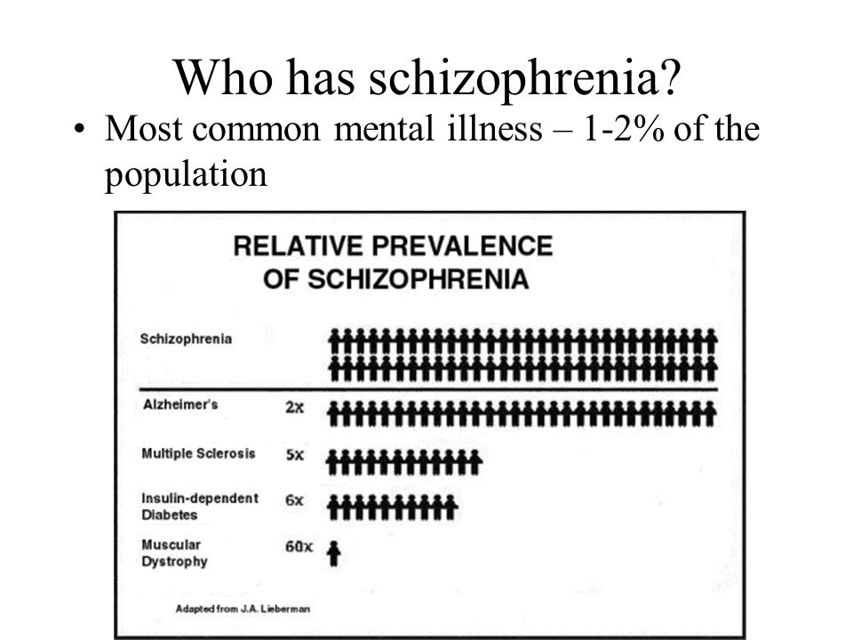 Who has schizophrenia? Most common mental illness – 1-2% of the population