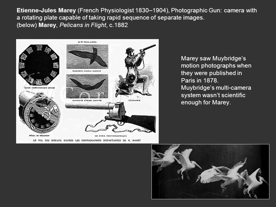 Etienne-Jules Marey (French Physiologist 1830–1904), Photographic Gun: camera with a rotating plate capable of taking rapid sequence of separate images.