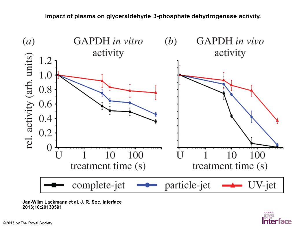 Impact of plasma on glyceraldehyde 3-phosphate dehydrogenase activity. Jan-Wilm Lackmann et al. J. R. Soc. Interface 2013;10:20130591 ©2013 by The Roy