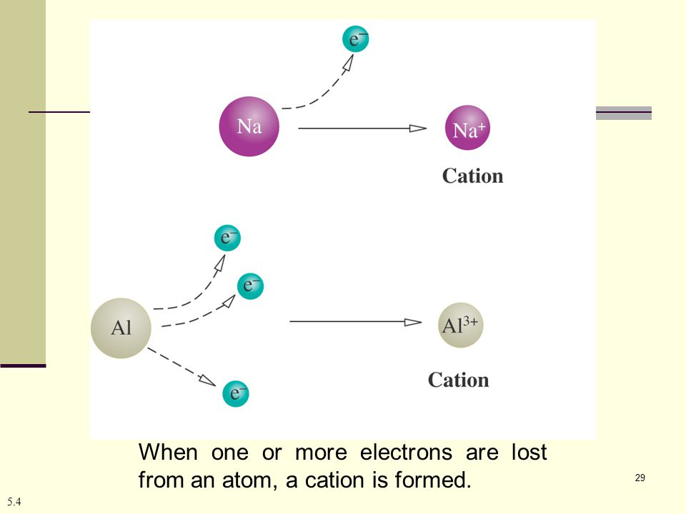 29 5.4 When one or more electrons are lost from an atom, a cation is formed.
