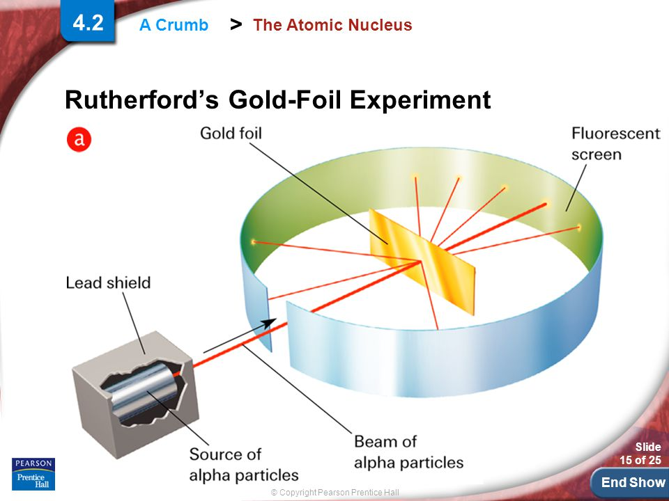 End Show Slide 15 of 25 © Copyright Pearson Prentice Hall > A Crumb The Atomic Nucleus Rutherford's Gold-Foil Experiment 4.2