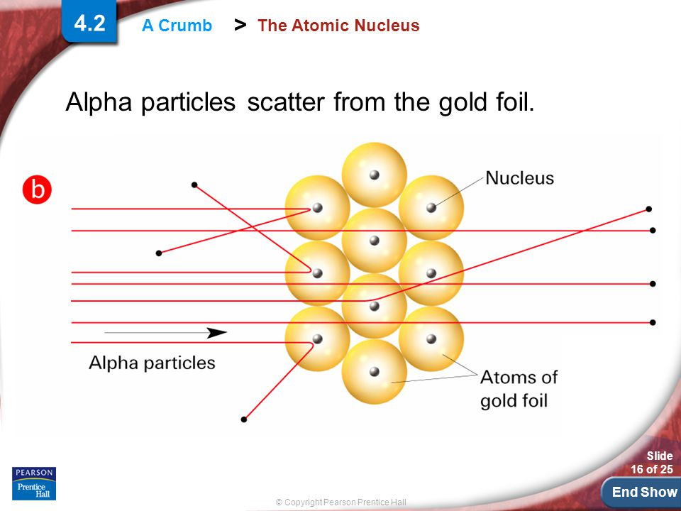 End Show Slide 16 of 25 © Copyright Pearson Prentice Hall > A Crumb The Atomic Nucleus Alpha particles scatter from the gold foil.