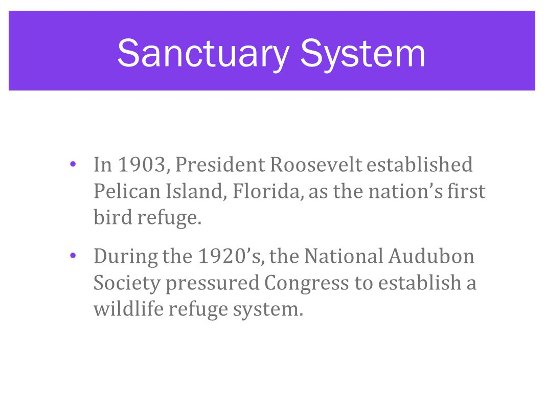 Sanctuary System In 1903, President Roosevelt established Pelican Island, Florida, as the nation's first bird refuge.