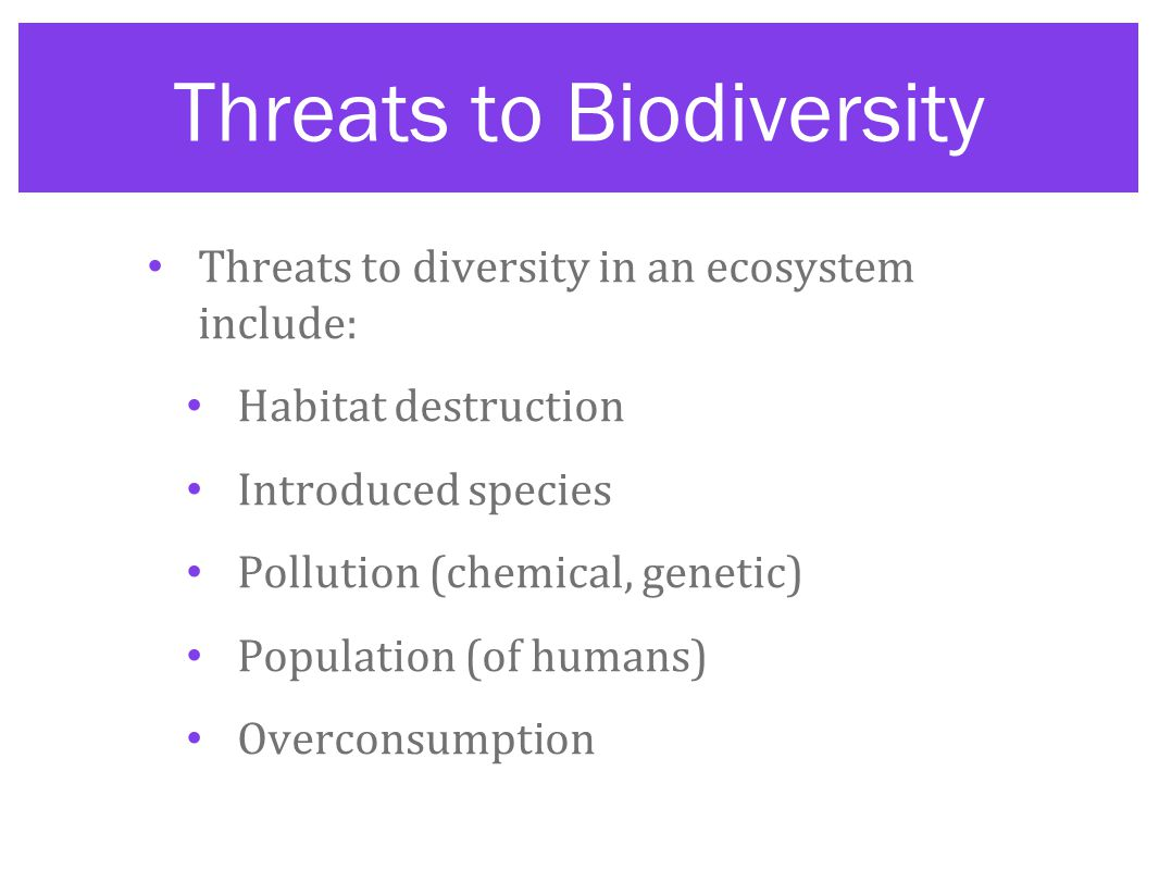 Threats to Biodiversity Threats to diversity in an ecosystem include: Habitat destruction Introduced species Pollution (chemical, genetic) Population (of humans) Overconsumption